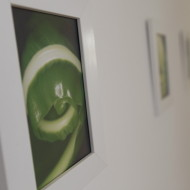 Praxis-Galerie